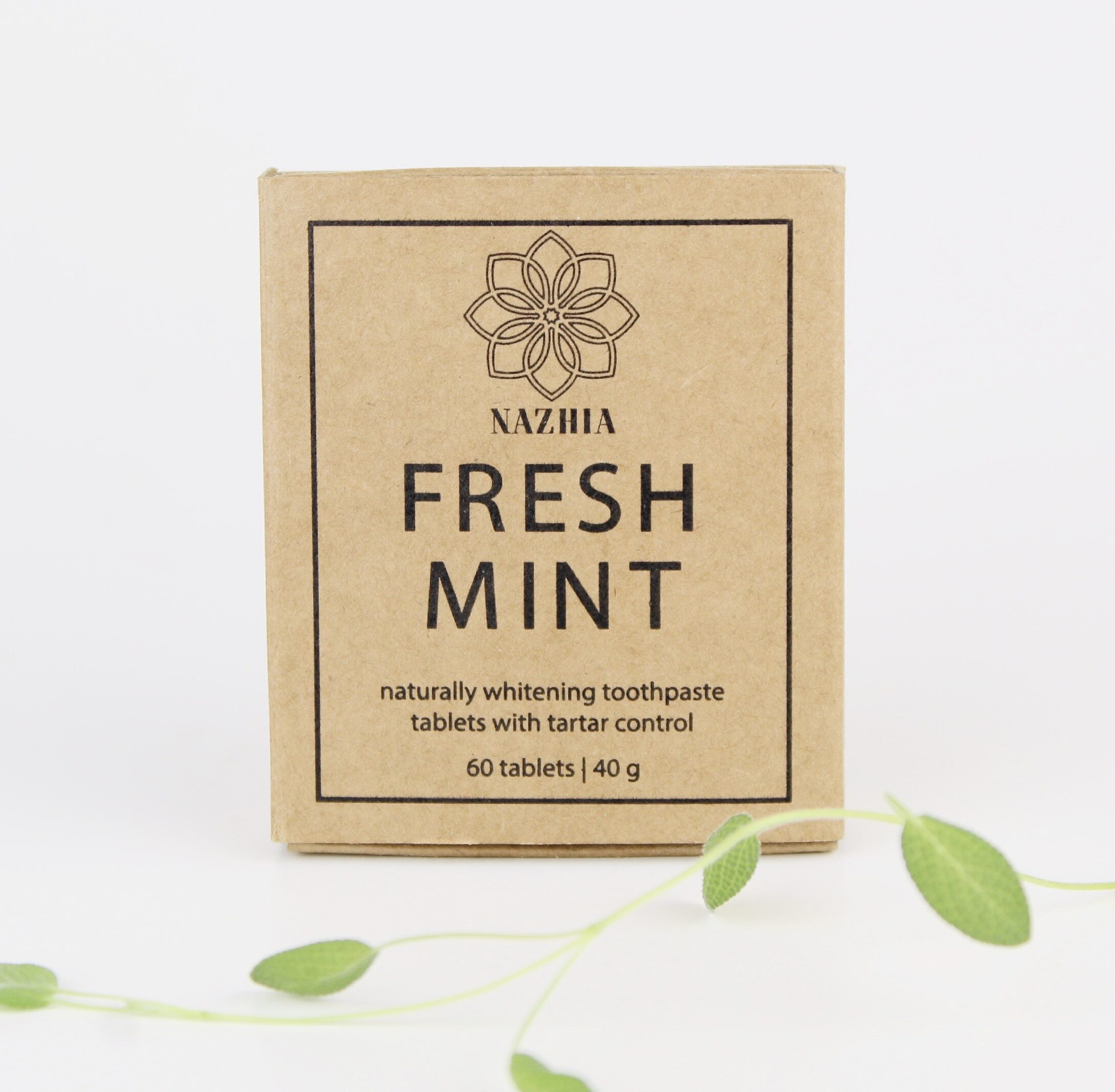 Fresh Mint Toothpaste Tablets 1